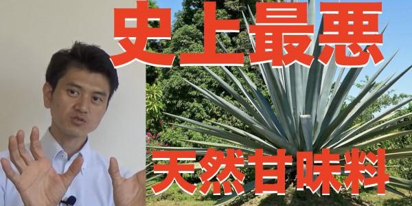 sam 自然治癒 アガベ.001