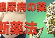 sam 自然治癒 糖尿病の断薬法.001